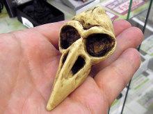 ワタリガラスの頭蓋骨をイメージしたUSBメモリ「RAVEN SKULL」が登場!