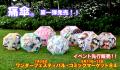 「けいおん!」絵柄など、傘メーカーが「痛傘」を市場に投入! 職人技による「8面縫い合わせ+柄合わせ仕様」の本格モデル
