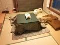 猫カフェ「cat cafe nyanny(ニャニー)秋葉原店」、クリスマスイベント開催決定