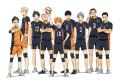 高校バレーアニメ「ハイキュー!!」、キービジュアル第2弾を公開! 「ヒナガラス」の着ぐるみ原型も