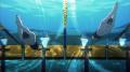 男子水泳部アニメ「Free!」第2期、新キャラ・山崎宗介の設定画とPV第2弾を公開! 池袋での期間限定ポスター掲出も決定