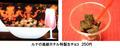 TVアニメ「巌窟王」、一挙上映会の追加ゲストに監督・前田真宏ら主要スタッフ陣! グッズやメニューの詳細も判明