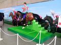 秋葉原に約5mのウルトラ馬像が登場! ウルトラマン×JRA「ウルトラ有馬記念@AKIBA」、12月22日から28日まで開催