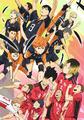 TVアニメ「ハイキュー!!」、劇場版、TV版セカンドシーズン、イベント、さらに舞台化など、「ハイキュー!!頂プロジェクト2015」最新情報!