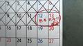 「劇場版 弱虫ペダル」、公開日と特報第2弾が解禁に! TV第2期の新編集版「弱虫ペダル Re:ROAD(リロード)」は6月12日から