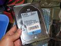 ���ϋv�d�l��6TB 3.5�C���`HDD�uWD6001F9YZ�v��Western Digital����I
