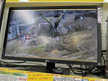 【週間ランキング】2015年7月第2週のアキバ総研PC系人気記事トップ5