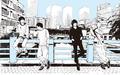 秋アニメ「3月のライオン」、BUMP OF CHICKENが歌うOPテーマのタイトルは「アンサー」! 9月18日の特番で最速オンエア